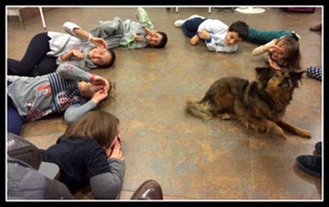 Cuando jugar con un perro es también terapia