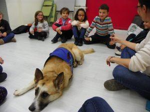 terapia-con-perros-para-ninos-inteligencia-emocional-13